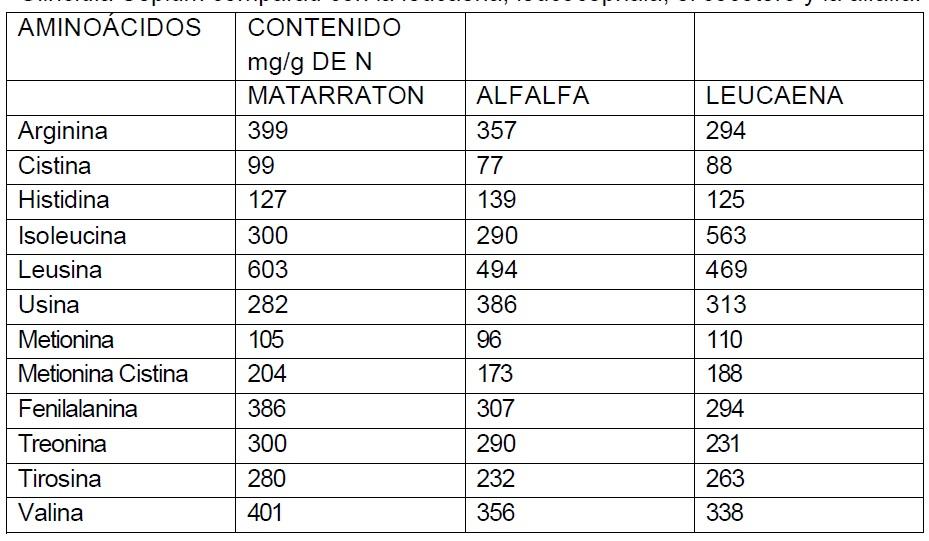 contenido en aminoácidos de Matarraton comparado con la leucaena y la alfalfa