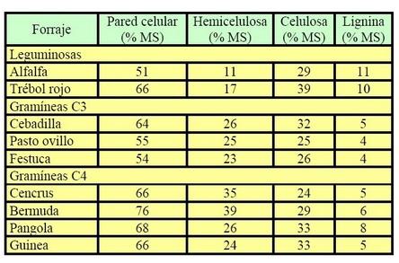 Contenido de celulosa, hemicelulosa y lignina en la pared celular de diferetes Gramíeas y leguminosas