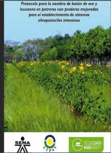 Guía técnica: Protocolo para la siembra de botón de oro y leucaena en potreros con praderas mejoradas para el establecimiento de sistemas silvopastoriles intensivos