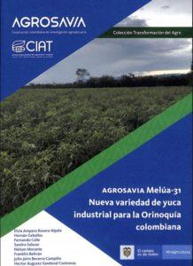 AGROSAVIA Melúa-31 Nueva variedad de yuca