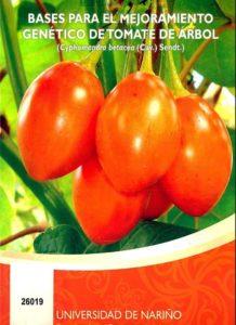 Bases para el mejoramiento genético de tomate de árbol
