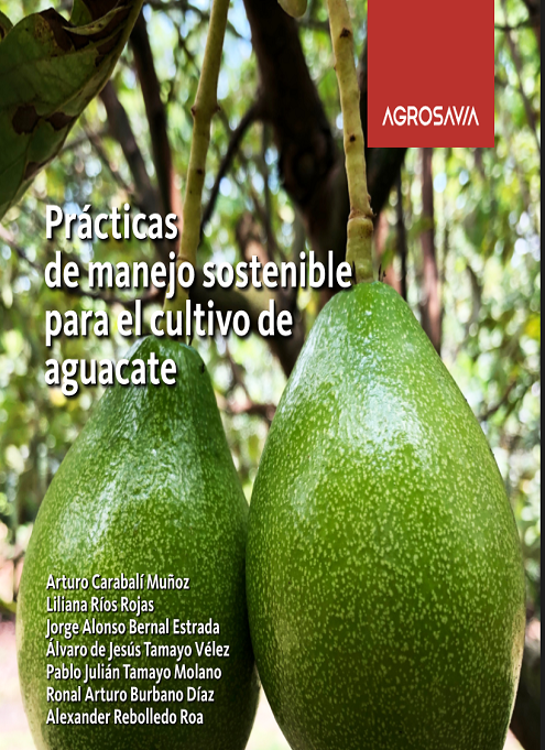 Prácticas de manejo sostenible para el cultivo de aguacate