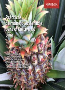 Prácticas de manejo sostenible para el cultivo de piña