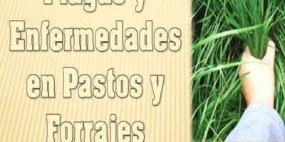 Plagas y Enfermedades de los Pastos y Forrajes